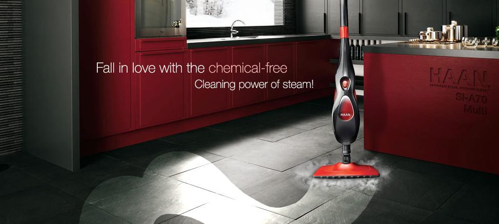Haan Steam Mop image